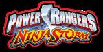 PR_Ninja_Storm_logo